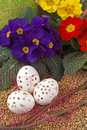 Free Easter Time Royalty Free Stock Photos - 8677658