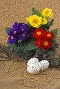 Free Symbol Spring Stock Photo - 8679870