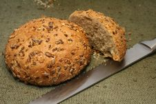 Free Brown Bread Stock Photos - 8671843