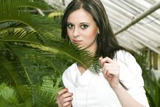 Girl And Palm Stock Photos