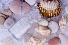 Free Stones And Shells Stock Photo - 8674900