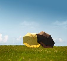 Two Umbrellas On A Sunny Meadow Royalty Free Stock Photos