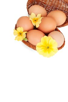 Free Eggs In Baskets With Spring Flowers, Isolated Stock Photo - 8675620