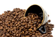 Free Cup And Coffee Beans Royalty Free Stock Image - 8676306