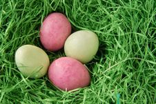 Free Easter Royalty Free Stock Photography - 8677507