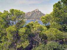 Free Island Dragonera, Mallorca, Spain Royalty Free Stock Images - 8677539