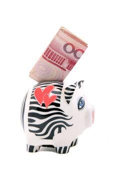 Free Piggy Bank Stock Image - 8678011