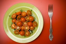 Free Salad With Tomatoes On The Plate Royalty Free Stock Photos - 8680048