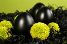 Free Easter Eggs Royalty Free Stock Photos - 8681988