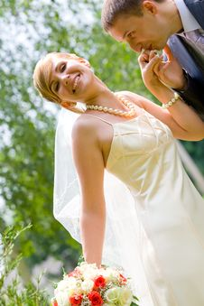 Free Marriage Stock Image - 8683221