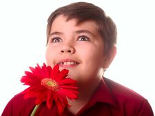 Free Teenager And Red Flower Stock Photography - 8691632