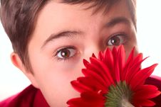 Free Teenager And Red Flower Stock Photo - 8691990