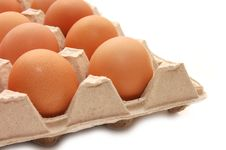 Free Eggs In Tray Stock Images - 8692164
