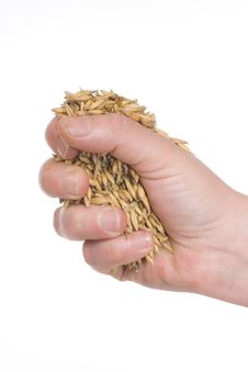 Handful Of Oats Stock Photos