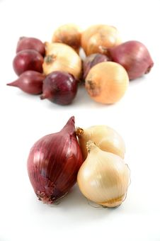 Free Onion Royalty Free Stock Photo - 8693825