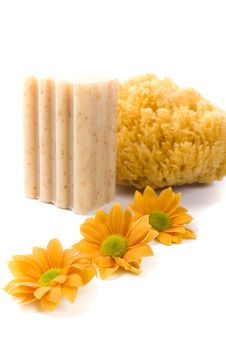 Free Natural Sponge, Soap And Flowers Royalty Free Stock Image - 8694486