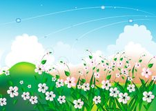 Free Summer Bright Landscape With White Flowers Stock Photography - 8694702