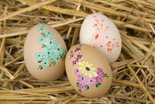Free Easter Royalty Free Stock Photo - 8695465
