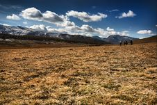Free Meadow And Mountains Royalty Free Stock Image - 8697226