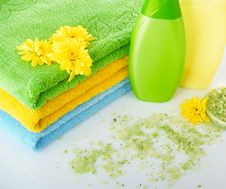 Free Grassy Salt And Towel Royalty Free Stock Images - 8698559