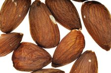 Free Almond. Stock Images - 8698994