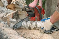Free Cutting Log With Chainsaw Stock Photos - 871263