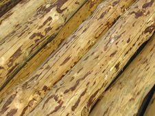Wooden Trunks Stock Image