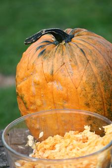 Free Pumpkin Stock Images - 872494