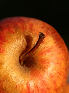 Free Apple Royalty Free Stock Photos - 872688
