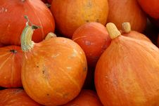 Free Pumpkin Royalty Free Stock Images - 872729