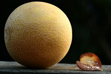 Free Wet Leaf And Melon Stock Images - 873164
