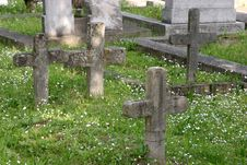 Free Cemetery Royalty Free Stock Photography - 874367