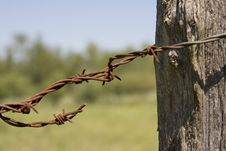 Free Barbed Wire 1 Royalty Free Stock Photography - 877367