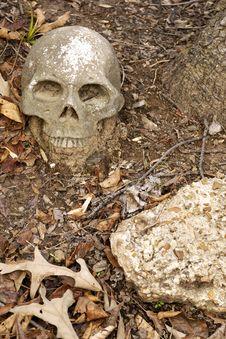 Man-made Human Skull Stock Photos