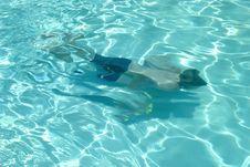 Free Swimming Underwater Royalty Free Stock Photos - 878628