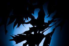 Free Silhouette Moonlight Stock Photos - 878823