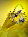 Free Flowers Stock Images - 8706414