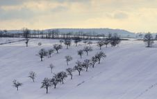 Romanian Countryside In Winter Stock Photography