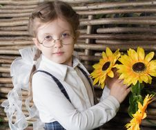 Free Girl With Flowers Royalty Free Stock Images - 8702399