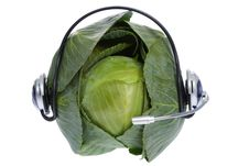 Free Cabbage With Earphones On White Royalty Free Stock Photography - 8703607