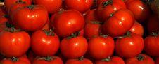 Free Fresh Tomatos At The Market Royalty Free Stock Photo - 8704715