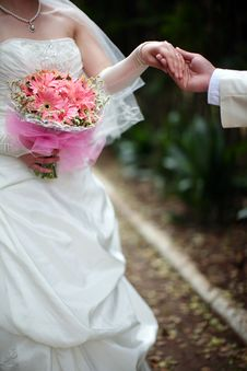 Free Pretty Bride Royalty Free Stock Photography - 8707007