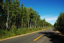 Free Road Stock Photos - 8707513