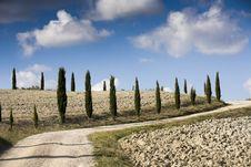 Free Tuscan Landscape Stock Image - 8709051