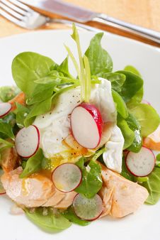 Free Fresh Salad Royalty Free Stock Images - 8712619