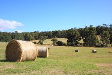 Farm Paddock With Hay Bales Stock Photography