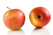 Free Delightful Apples Stock Photography - 8714972