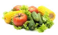 Free Vegetables Isolated Stock Image - 8717411