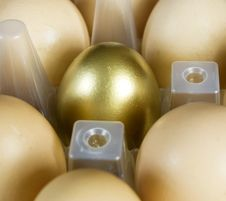 Free Gold Egg Stock Photos - 8718423