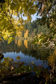 Free Lake During Autumn Stock Image - 8718831